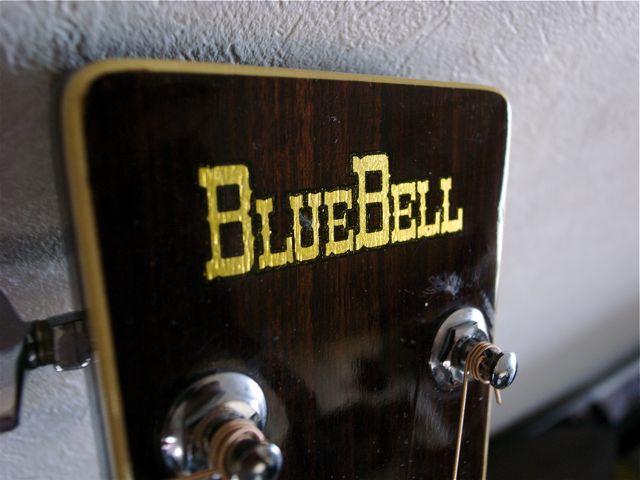 bluebell2.jpg